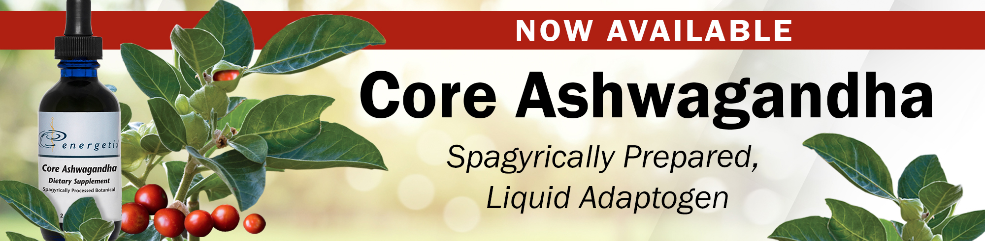 Core Ashwagandha Is Here